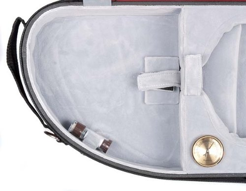 violin case puffy 3